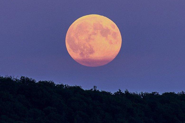 Księżyc Żniwiarzy nie pozwoli nam spać. Ale warto go zobaczyć